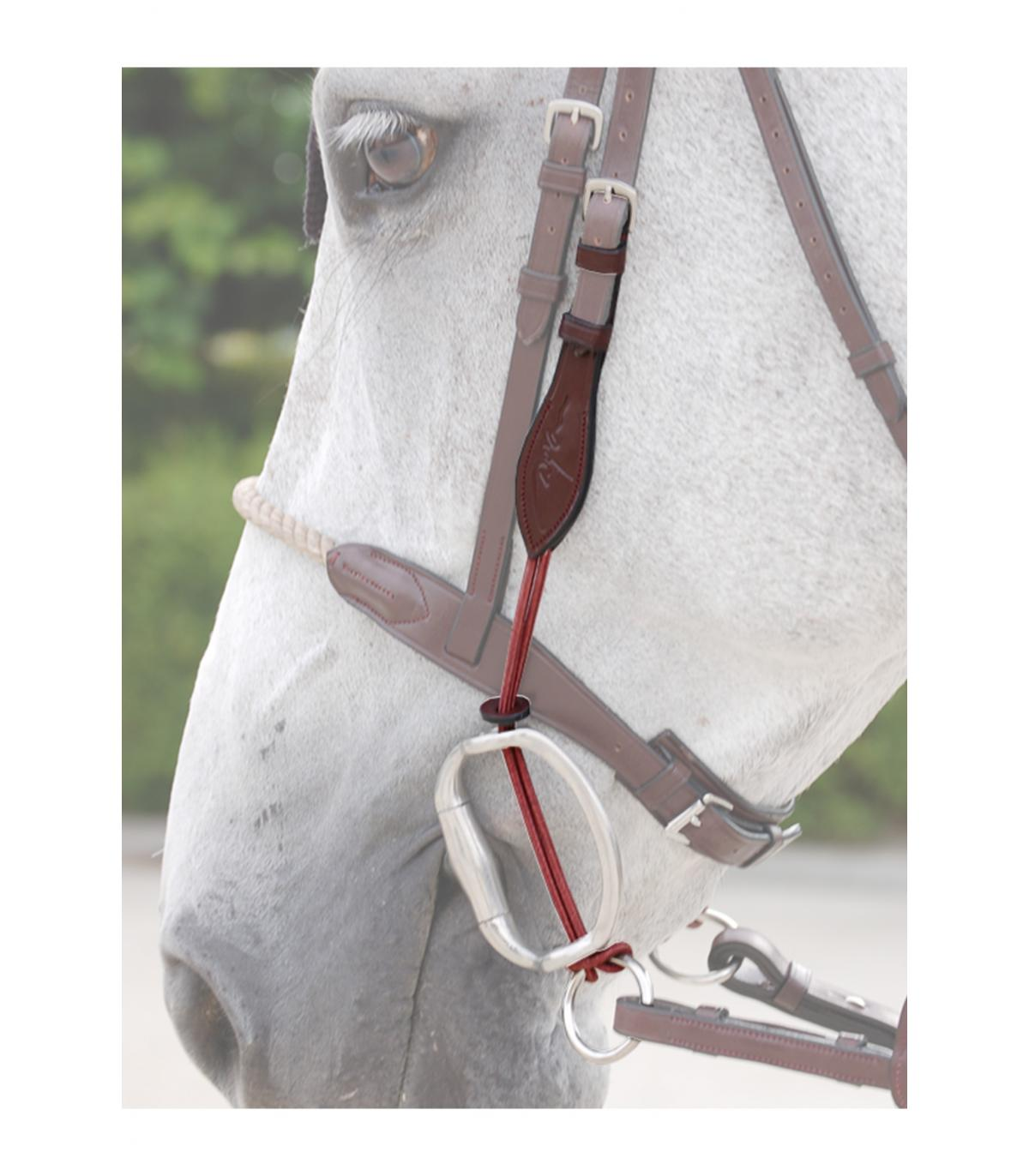 Red western Nylon PONY Taille éperons Rein nouveau cheval Tack! /& Bit Set