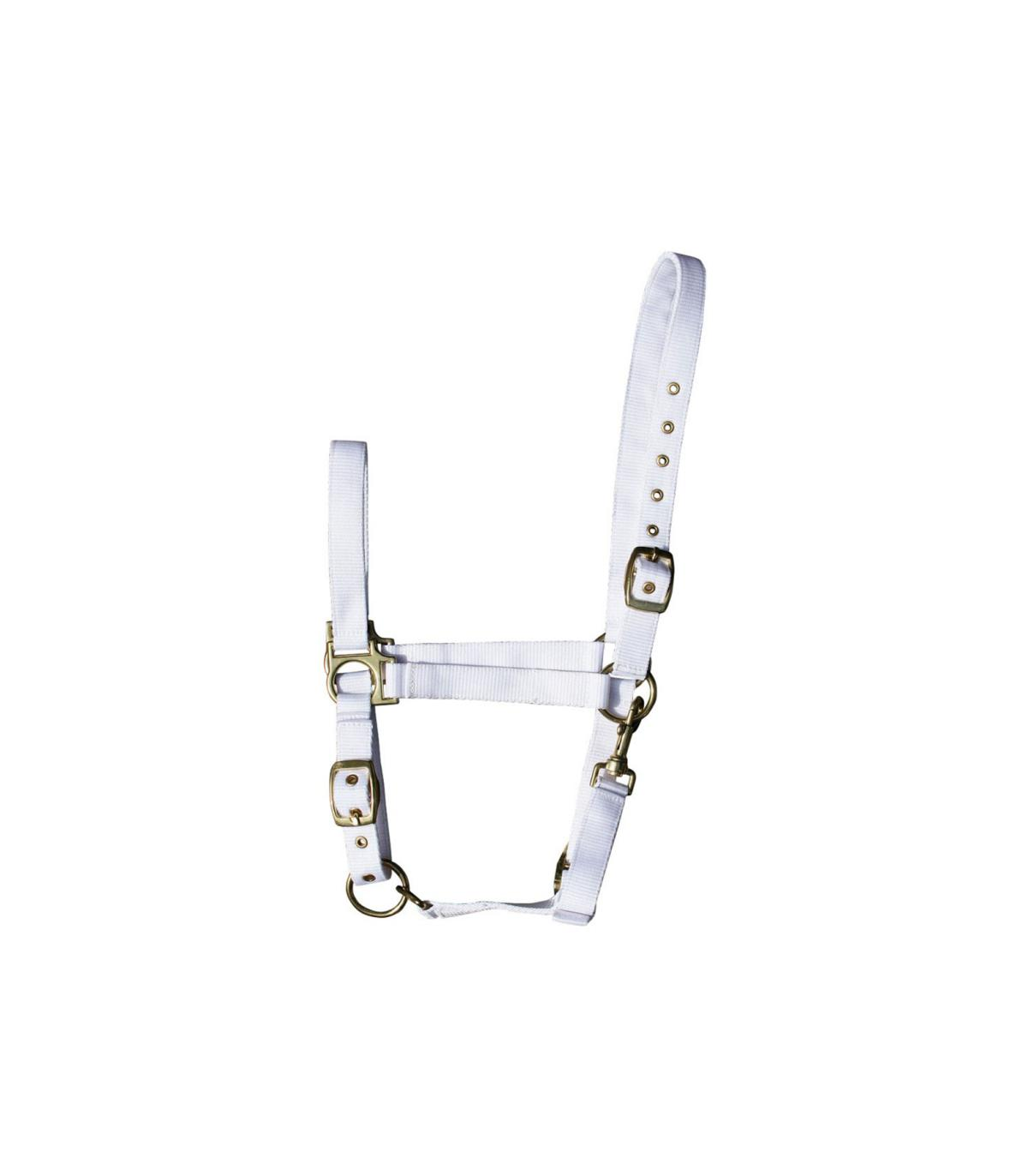 Trense Licol d/équitation su/édoise Harrys Horse 28002110-03x XL Marron X